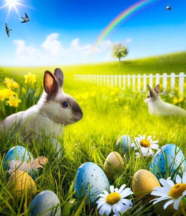 属兔微信招财风景图片
