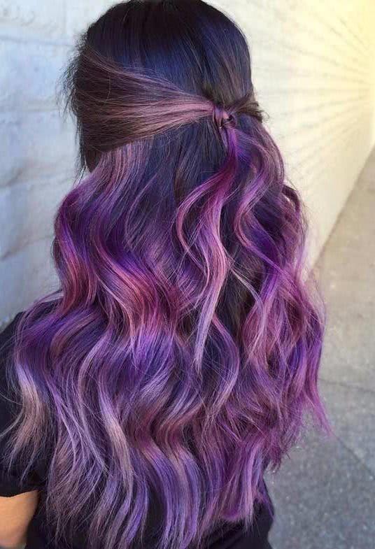 大胆时尚黑紫头发色彩观念图片