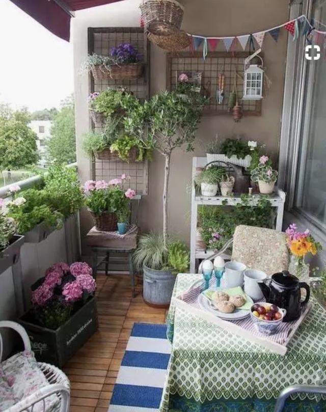 我把阳台变成花房,开始了小院的悠然生活