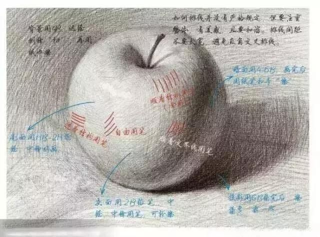 素描教程   最详细画苹果解析