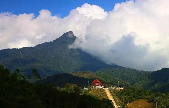 3平方公里,能看见五指山风景区,到雅宾森林保护区也不远.