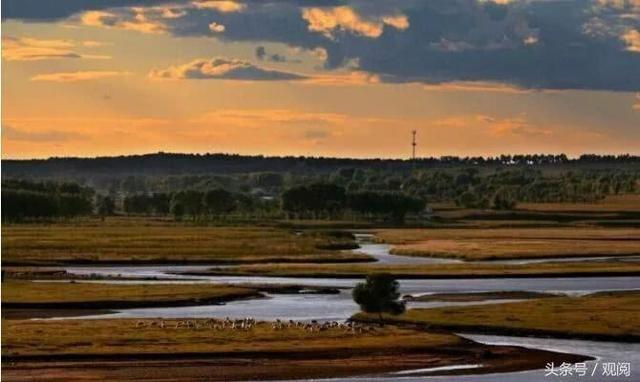 诺敏河我心中最美的风景