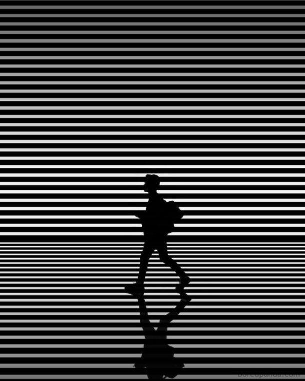 看完这些黑白的摄影作品,你有没有什么灵感呢?