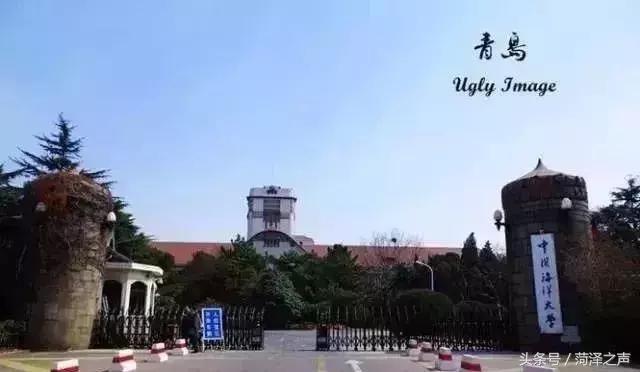 中国石油大学(华东),哈尔滨工业大学(威海),山东师范大学,山东财经
