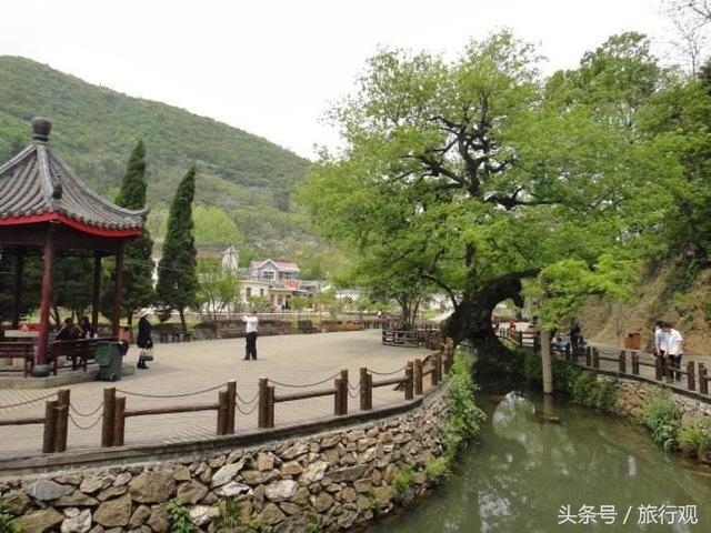 中国古铜都-铜陵美景之 凤凰山风景区