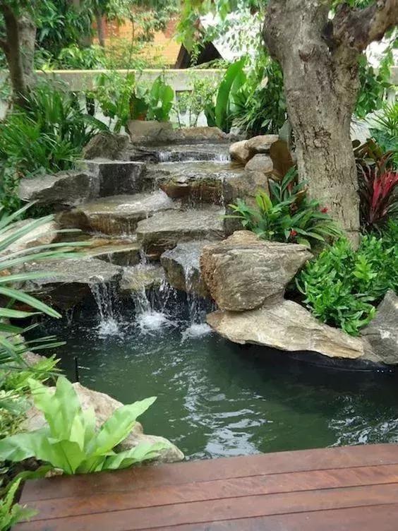 家庭园艺|庭院花园里的自然水池,这样来做 水景可以这样造!