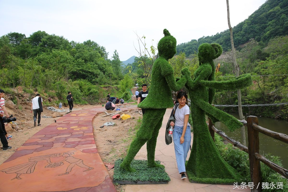 河南九峰山森林公园开园 游客络绎不绝