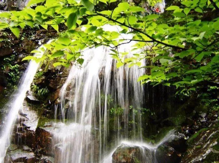"""莫干山以""""清凉世界""""而著称于世,但实际 其四季风景各有特色."""