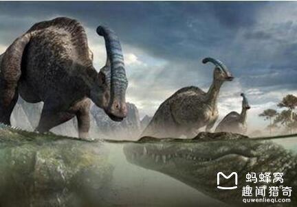食物以大型的恐龙为主,他的牙齿的咬合力已经远远的超过霸王龙!