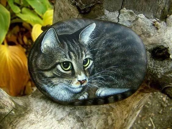一块石头,被艺术家画成了猫咪,神奇