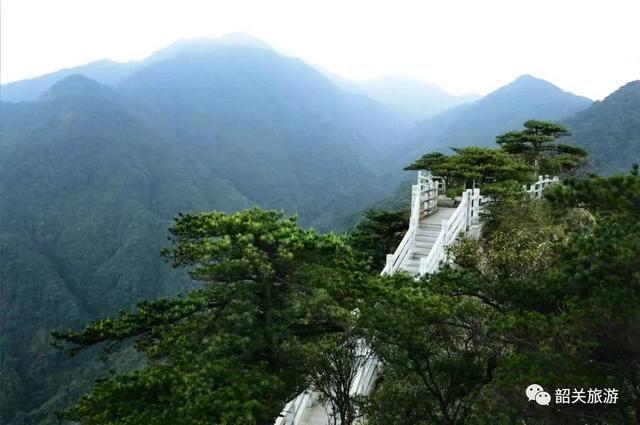 不如趁着和煦的春风携朋带友,来南岭国家森林公园踏青出游吧旅游登山浙大攻略图片