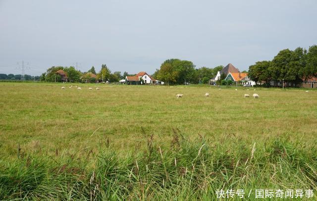 高度发达国家的农村风景——荷兰农村是这个样子的