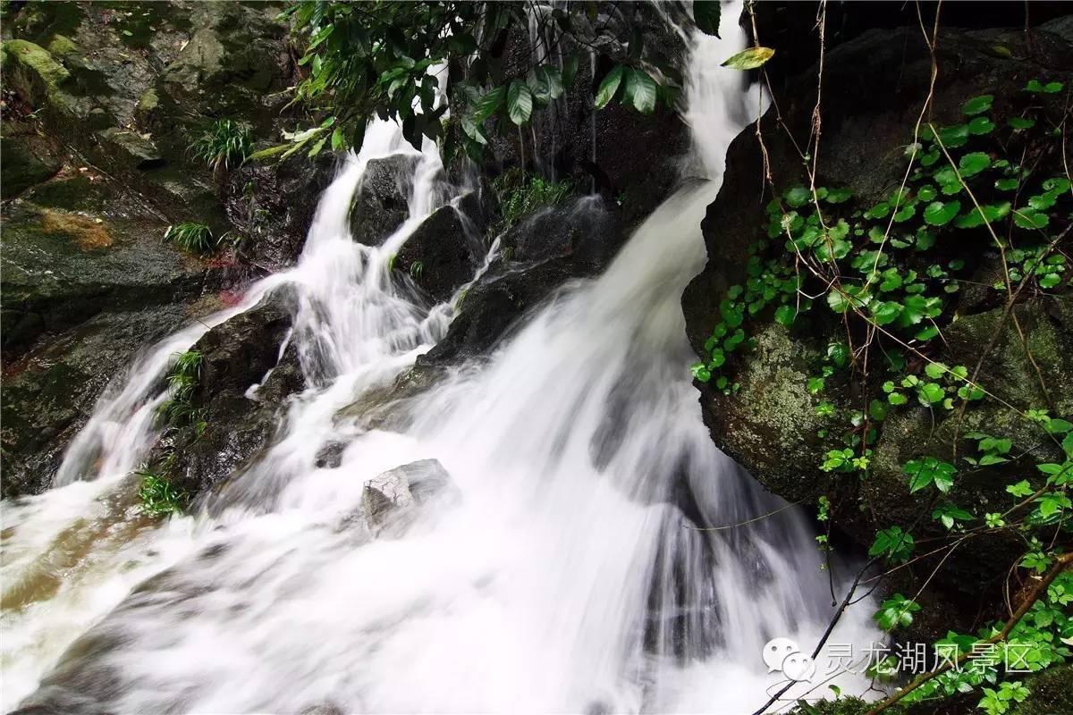 信阳灵龙湖生态文化旅游区——秋之韵