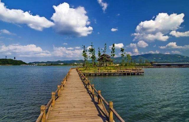 安徽涡阳道源国家湿地公园