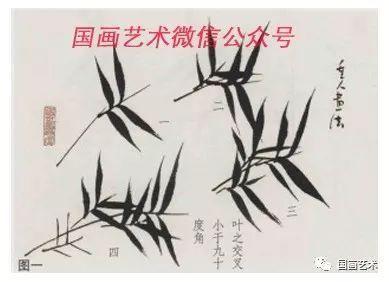 初学竹子画法步骤