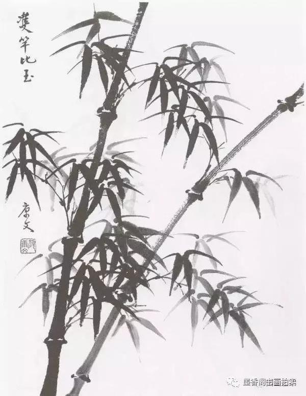 国画教学:竹子水墨写意画,写意竹子画法画法步骤图图片