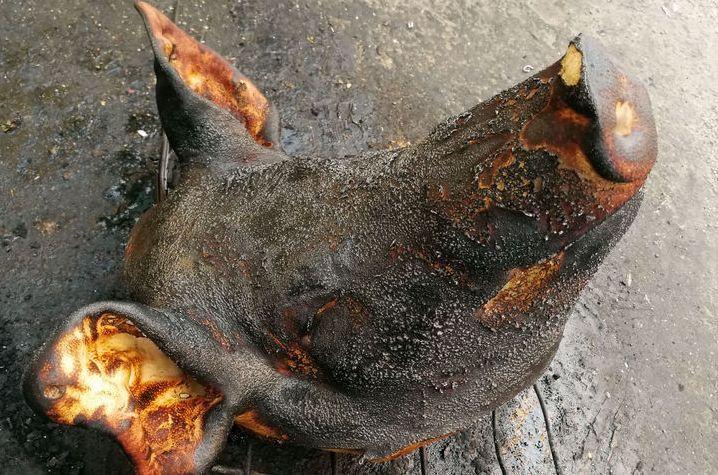 菜市场烧猪头,原来是给猪头去毛,猪头7块钱一斤,一只30多块