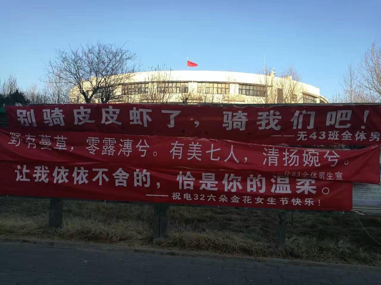 清华大学深度节,套卡们的男生亮了:被尔女生女生地亚标语表图片