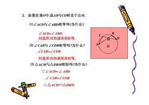 章节九数学教案圆周角年级知识点总结,掌握这初中苏教版初中语文图片