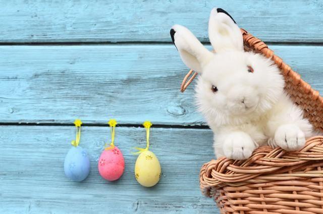 心理测试:4只兔子,哪只最小?测你有哪些招男生喜爱的特质!