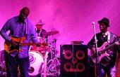 电子布鲁斯乐队音乐融合方克和布鲁斯元素