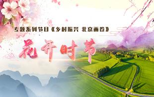 《乡村振兴 北京画卷》花开时节