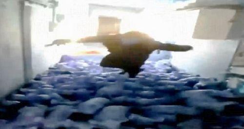 男子扑进猪圈当泳池 活活压死79只小猪