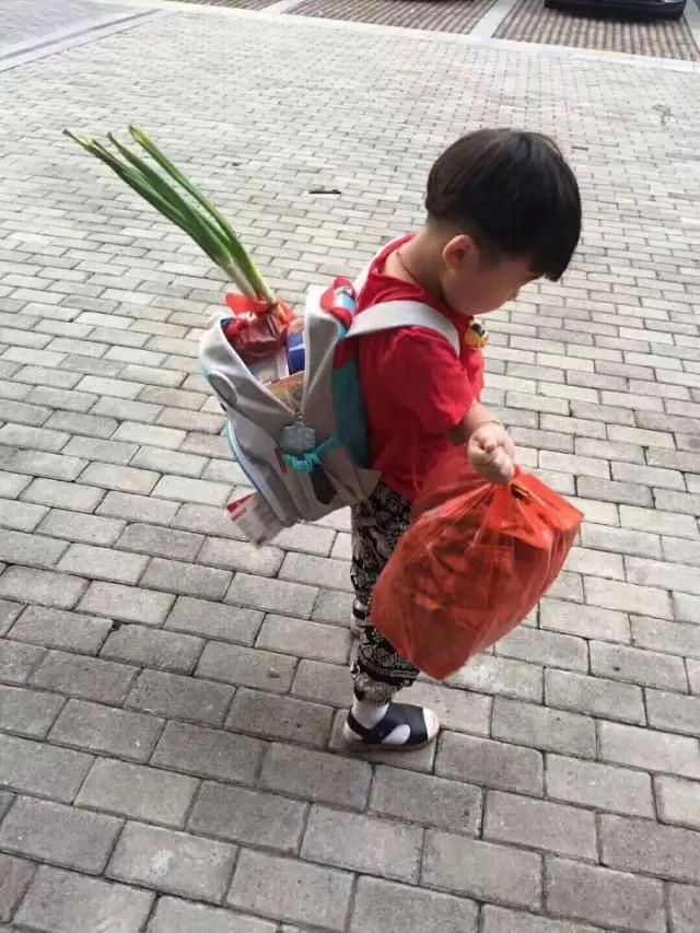 刚开学,这个背大葱的小男孩火了!听完原因笑喷了 - 武汉老徐 - 武汉老徐的博客