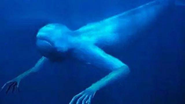 南极现30米高人鱼 神秘!