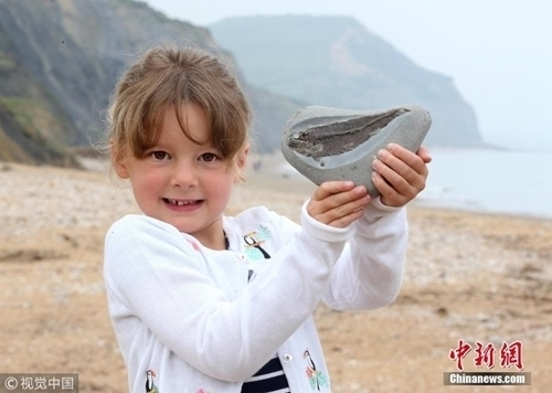 英国女孩海边玩耍意外捡到1.9亿年前化石! - 周公乐 - xinhua8848 的博客
