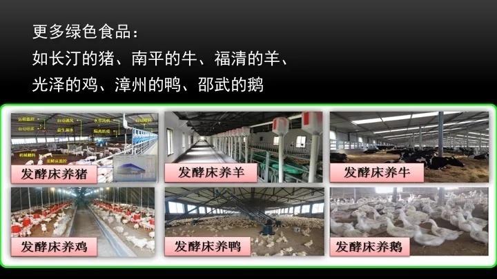 """刘波:转变观念的微生物技术,实现""""猪粮安天下"""""""