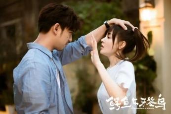 2019热播的4部青春剧 《未经安排的青春》上榜