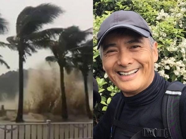 亚虎娱乐平台:网友目击男子冒台风砍树清路_没想到竟是周润发